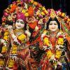 Shree Krishna Janmasthami